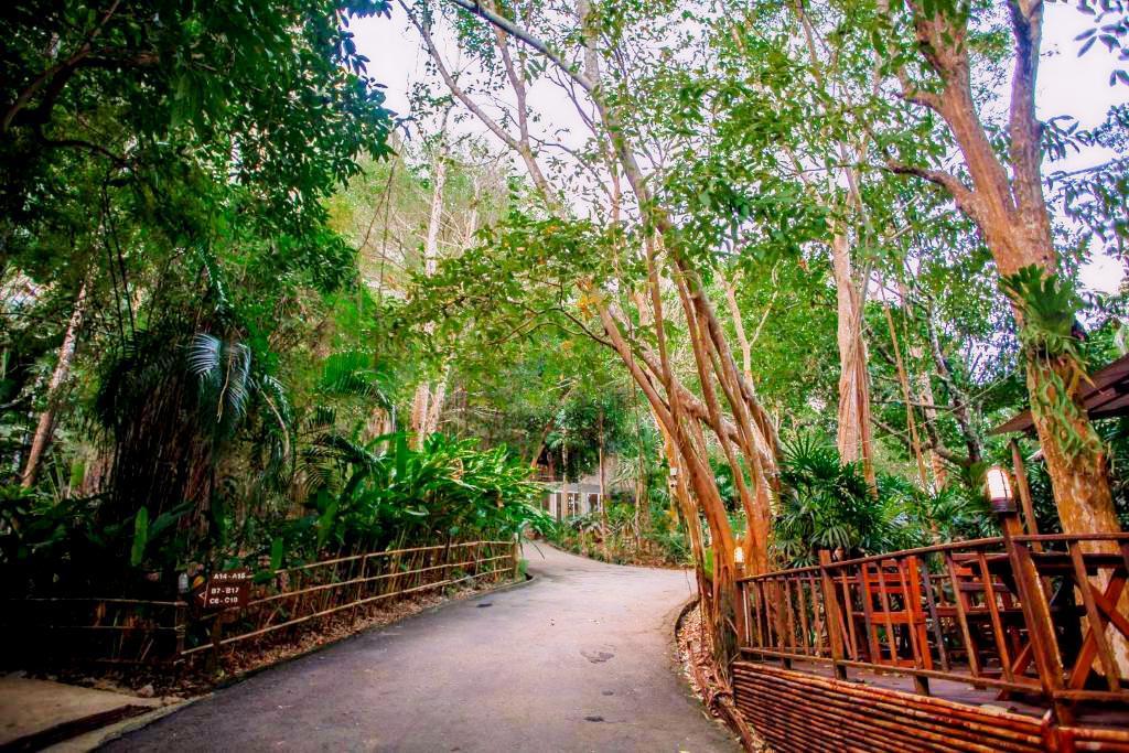 Ao Nang Cliff View Resort - Image 5