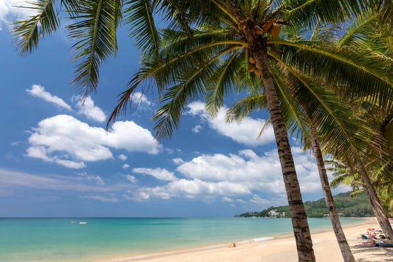 Sunwing Kamala Beach (SHA Certified) - Image 4
