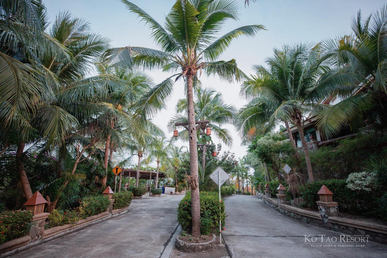 Ko Tao Resort - Image 2
