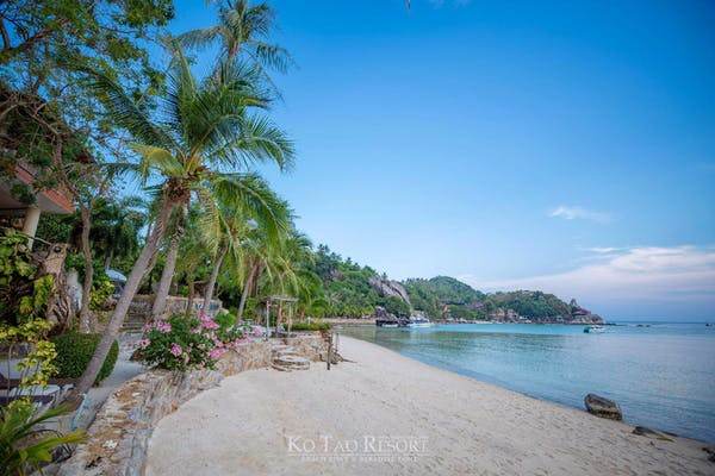 Ko Tao Resort - Image 3